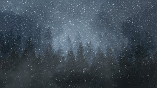 Thumbnail for Winter Night Backgrounds
