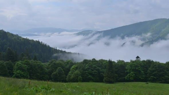 Thumbnail for Beauty Fog in Carpathian Mountaine