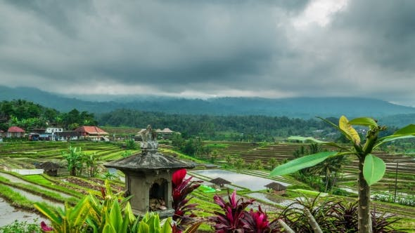 Thumbnail for Cloudy Over the Jatiluwih Rice Terraces in Bali, Indonesia
