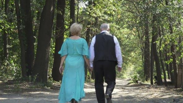 Thumbnail for Couple of Seniors Walks Along Alley