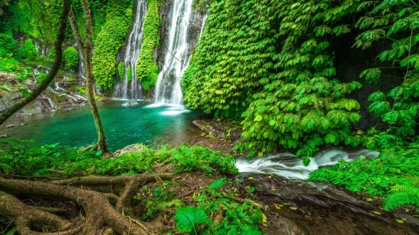 Thumbnail for Majestic Waterfall Banyumala in the Rainforest in Bali, Indonesia
