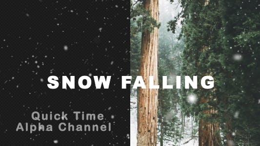 Thumbnail for Real Snow Falling