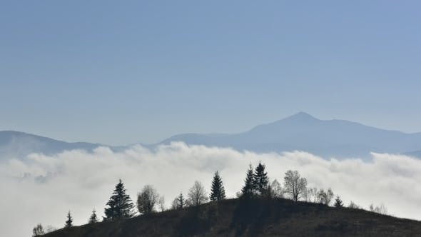 Cover Image for Beauty Fog in Carpathian Mountains