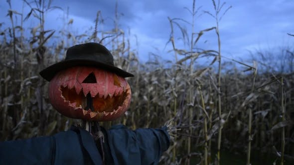 Cover Image for Scary Scarecrow in a Hat