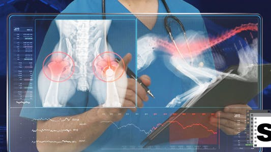 Thumbnail for Vet Doctor