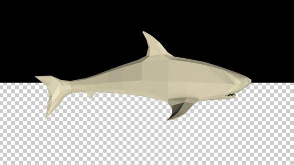Low Poly 3D Shark
