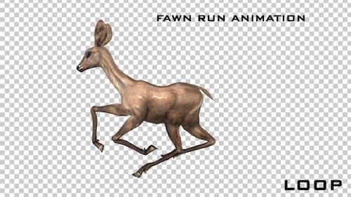 Fawn Run Animation