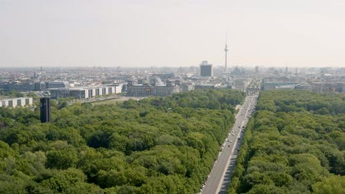 Flying Above Tiergarten
