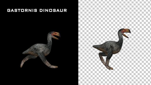 Thumbnail for Gastornis Dinosaur