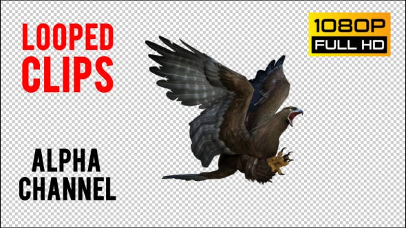 Thumbnail for Eagle 1 Realistic Pack 3