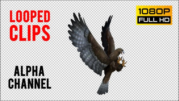 Thumbnail for Eagle 3 Realistic Pack 3