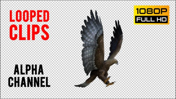 Thumbnail for Eagle 4 Realistic