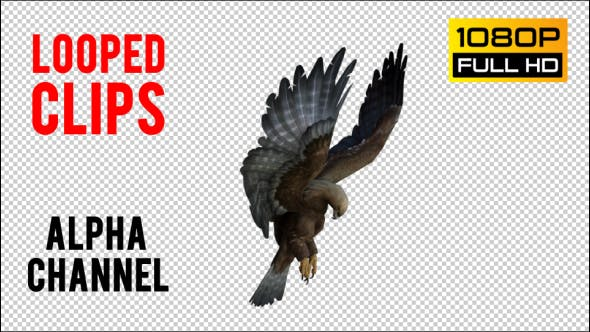 Thumbnail for Eagle 5 Realistic Pack 3