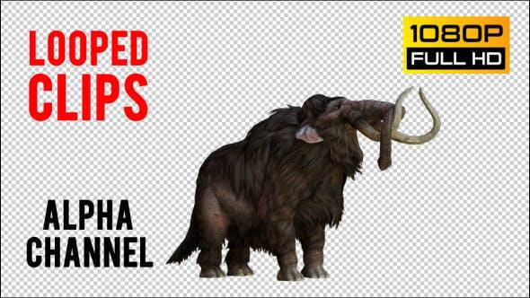 Mammoth 5 Realistic