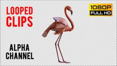 Flamingo 3 Realistic Pack 2