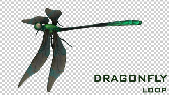Thumbnail for Dragonfly
