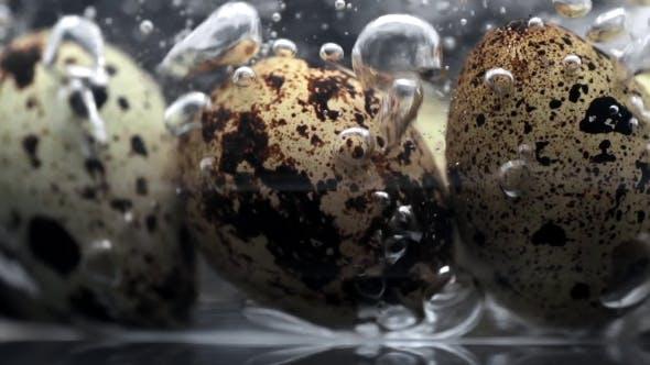 Thumbnail for Wachteleier im kochenden Wasser mit vielen Blasen in, Nahrung