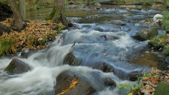 Thumbnail for Autumn River Flow with Beautiful Scenery