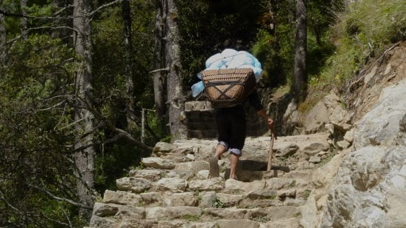 Thumbnail for Porter Is Carrying a Cargo in the Himalayas