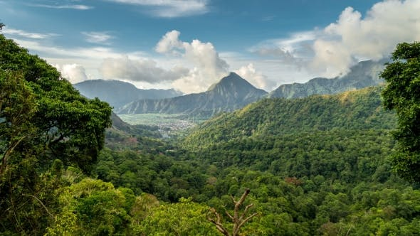 Thumbnail for Beautiful  View Over the Green Tropical Landscape in Sembalun Lawang, Lombok, Indonesia