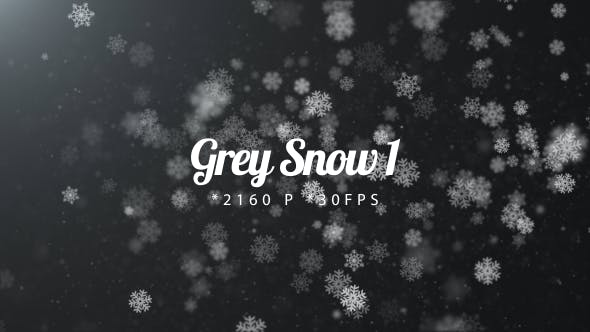 Cover Image for Grey Snow 1