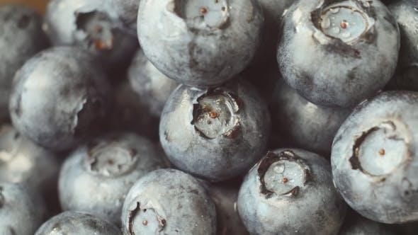 Thumbnail for Fresh Ripe Blue Berries Rotate