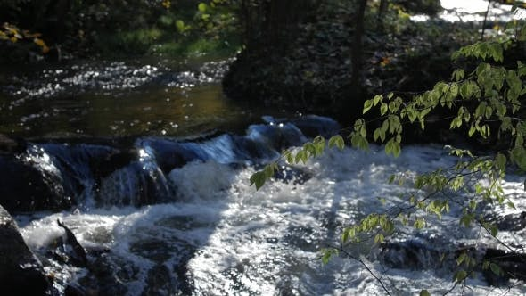Thumbnail for Rapid Stream, River Water Flowing Through the Stones, Wonderful Nature Scene of Wilderness