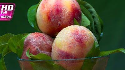Season Of Harvesting Of Peach Harvest