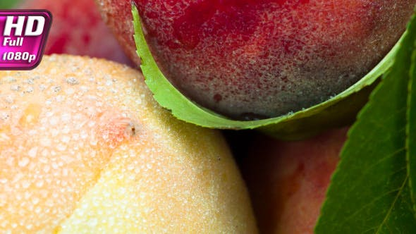 Thumbnail for Appetizing Juicy Peaches With Leaves