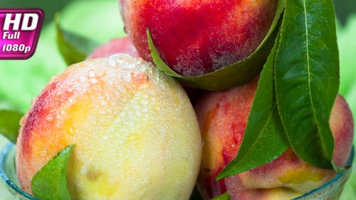 Appetizing Peaches Of The New Harvest