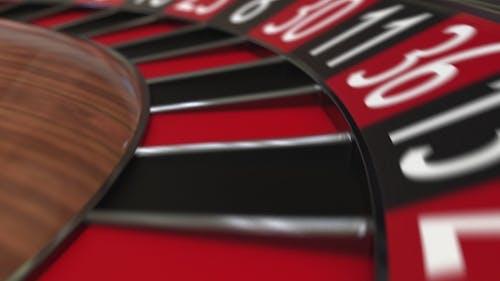 Casino Roulette Wheel Ball Hits 29 Twenty-nine Black