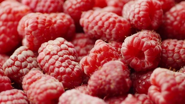 Thumbnail for Fruit Background. A Lot of Red Raspberries Rotate
