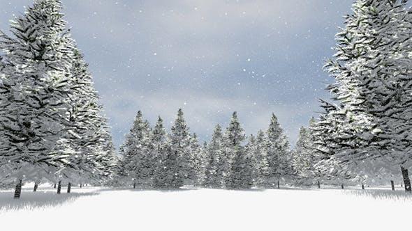Snow Melting Time-lapse