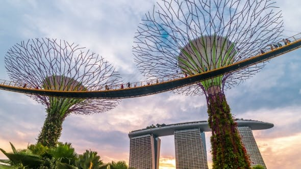 Thumbnail for Sunset Landscape of Gardens By the Bay in Singapore. August 2017
