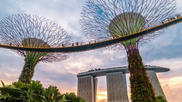 Thumbnail for Sunset at the Futuric Gardens By the Bay in Singapore. August 2017