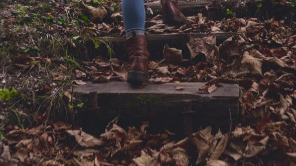 Thumbnail for Feet Walking Upstairs on Fall Leaves in Forest