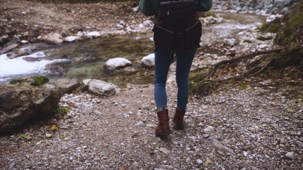 Thumbnail for Hiker Woman Take Pictures on Phone in the Forest