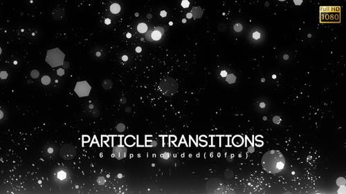Particle Transitions