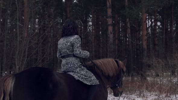 Thumbnail for Woman Riding on Horse in the Forest