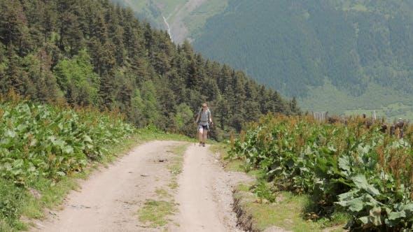 Thumbnail for Walking in the Caucasus Mountains, Georgia