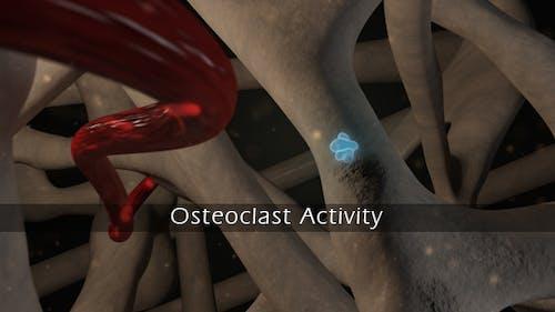 Osteoklastaktivität