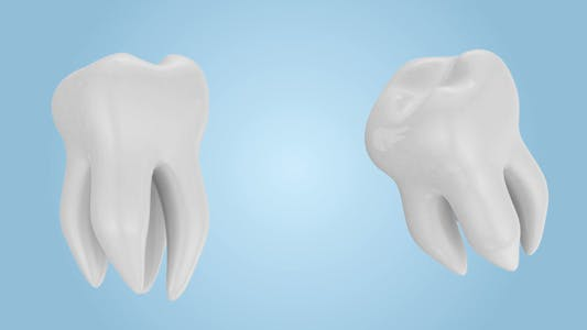 Thumbnail for Tooth Rotation Dental Concept Health Animation