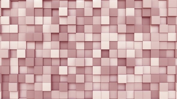 Cover Image for Pink Square Plates