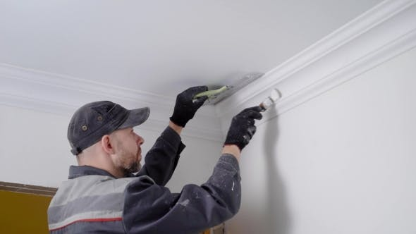 Cover Image for Experienced Worker Painting Celling Plinth