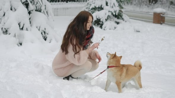 Thumbnail for A Young Woman Is Playing with Her Pet