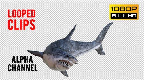 Shark 3 Realistic Pack 3