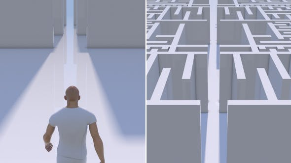 Man Entering Into a Maze