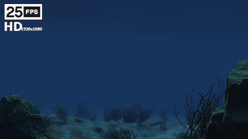 Under Water 01