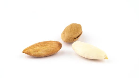 Thumbnail for Shelled, Blanched and Completely Blanched Almond