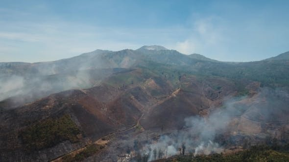 Thumbnail for Aerial View Forest Fire. Jawa Island, Indonesia